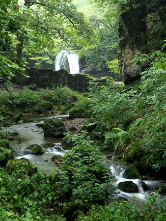 Janets Foss, Malham, Yorkshire Dales, Photo copyright © Mark Butler, Yorkshire Dales Photography